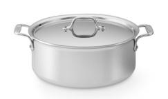 10 inch pot 400-240
