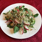 Watercress Radish Salad